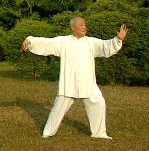 PREGUNTAS FRECUENTES SOBRE EL TAI CHI CHUAN – Taiji Quan Estilo Yang  Tradicional